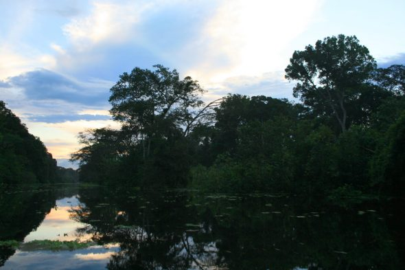 Amazonas bei Iquitos