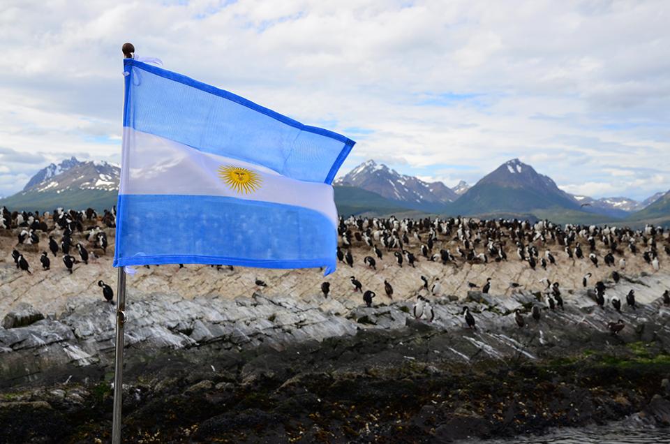 Pinguinkolonie in Feuerland, Argentinien