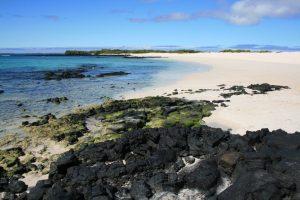 Strand auf den Galapagos-Inseln