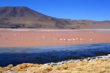 Top 10: Die Highlights und Sehenswürdigkeiten von Bolivien