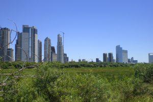 Reserva Ecológica von Buenos Aires