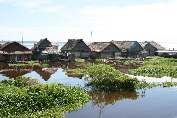 Der Amazonas in Südamerika