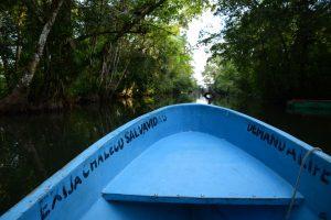 Bootfahren auf dem Río Dulce