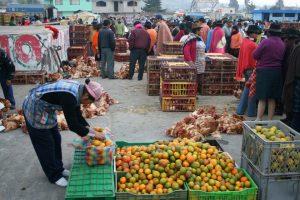 Obst und Gemüse, Markt in Saquísili