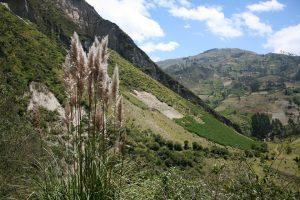 Anden-Landschaft in Ecuador