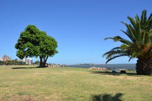 Park am Río de la Plata