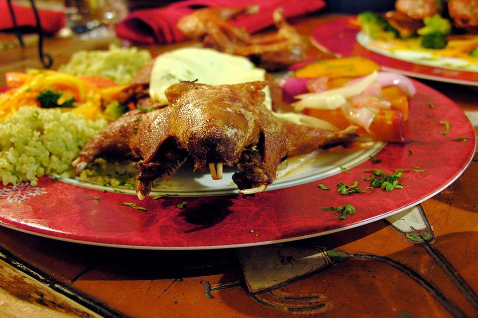 In Südamerika essen sie Meerschweinchen – Cuy als Spezialität