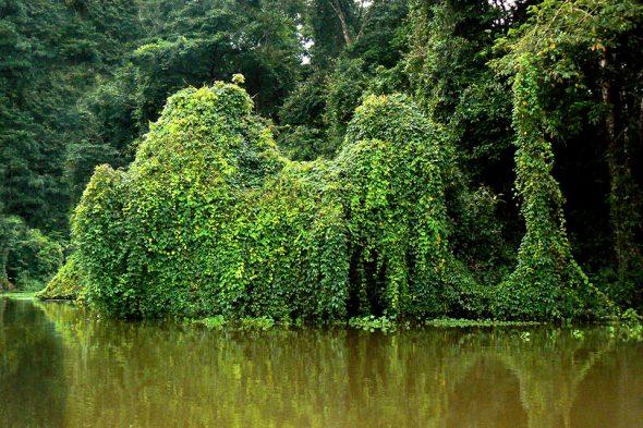 Manuel Antonio Nationalpark, Costa Rica