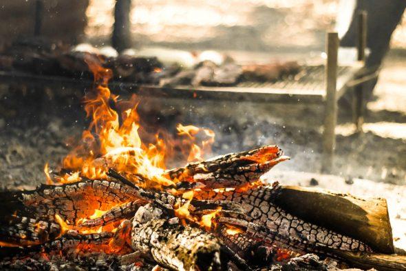 Grillen mit Holz(kohle)