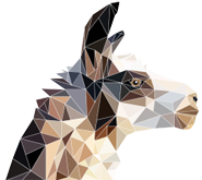 Partner – Info-Peru